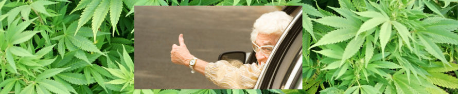 Conduite et cannabis