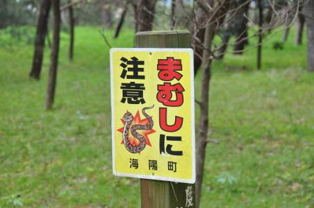 Shikoku J10_Catherine_Blog-CouleurSenior_Nikon 0739