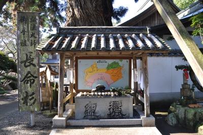 Shikoku J1_Nikon 1 (10)
