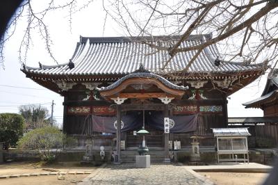 Shikoku J1_Nikon 1 (35)