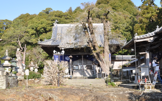 Shikoku J5_Catherine_Blog-CouleurSenior_Nikon 1 (240)