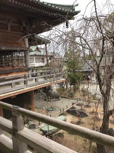 Shikoku J6_Catherine_Blog-CouleurSenior_IMG 0446