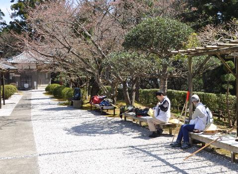 Shikoku J7_Catherine_Blog-CouleurSenior_Nikon 1 (427)
