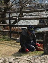 Shikoku J8_Catherine_Blog-CouleurSenior_Nikon 1 (490)
