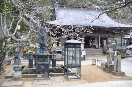Shikoku J9_Catherine_Blog-CouleurSenior_Nikon 1 0640