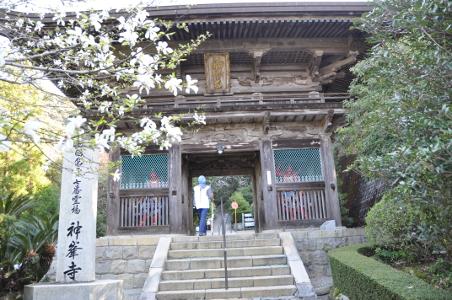 Shikoku J14_Catherine_Blog-CouleurSenior_Nikon 2 0138