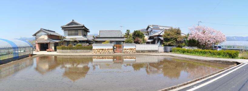 Shikoku J16_Catherine_Blog-CouleurSenior_Nikon 02 0483