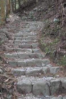 Shikoku J40_Catherine_Blog-CouleurSenior_Nikon 4 0669