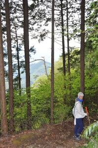 Shikoku J40_Catherine_Blog-CouleurSenior_Nikon 4 0689
