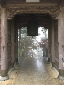 Shikoku J43_Catherine_Blog-CouleurSenior_IMG 798