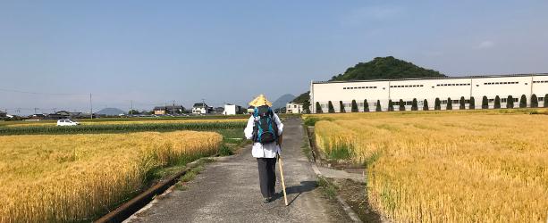 Shikoku J45_Catherine_Blog-CouleurSenior_IMG 1914