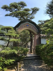 Shikoku J46_Catherine_Blog-CouleurSenior_IMG 1946