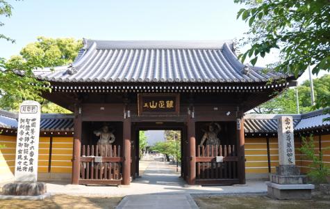 Shikoku J46_Catherine_Blog-CouleurSenior_Nikon 4 0941