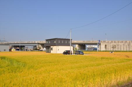 Shikoku J46_Catherine_Blog-CouleurSenior_Nikon 4 0956