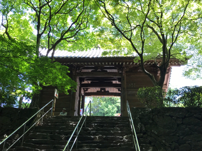 Shikoku J47_Catherine_Blog-CouleurSenior_IMG 1984
