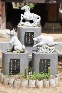 Shikoku J47_Catherine_Blog-CouleurSenior_Nikon 5 0072
