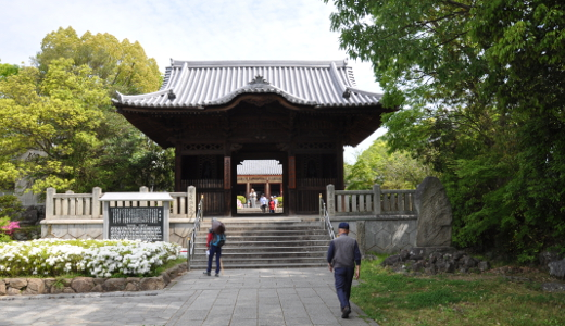 Shikoku J48_Catherine_Blog-CouleurSenior_Nikon 5 0195