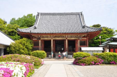 Shikoku J48_Catherine_Blog-CouleurSenior_Nikon 5 0198