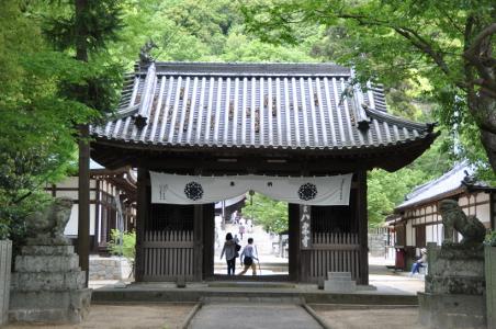 Shikoku J48_Catherine_Blog-CouleurSenior_Nikon 5 0269