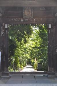 Shikoku J49_Catherine_Blog-CouleurSenior_Nikon 5 0330