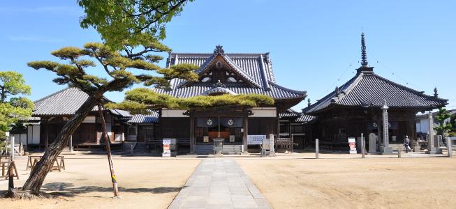 Shikoku J50 Catherine_Blog-CouleurSenior_Nikon 5 0497