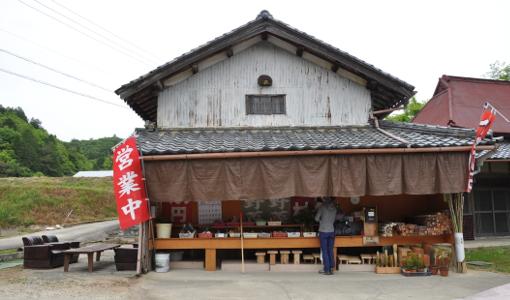 Shikoku J50 Catherine_Blog-CouleurSenior_Nikon 5 0612