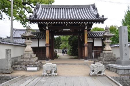 Shikoku J41_Catherine_Blog-CouleurSenior_Nikon 4 0715