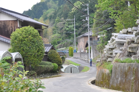 Shikoku J41_Catherine_Blog-CouleurSenior_Nikon 4 0741