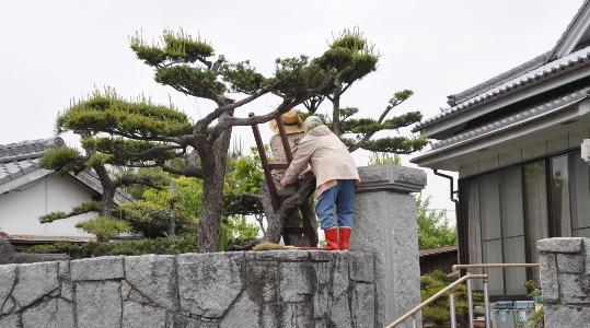 Shikoku J41_Catherine_Blog-CouleurSenior_Nikon 4 0747