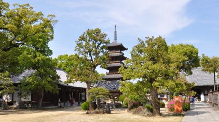 Shikoku J44_Catherine_Blog-CouleurSenior_Nikon 4 0834