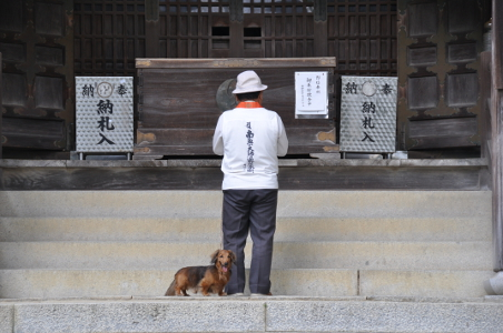Shikoku J48_Catherine_Blog-CouleurSenior_Nikon 5 0286