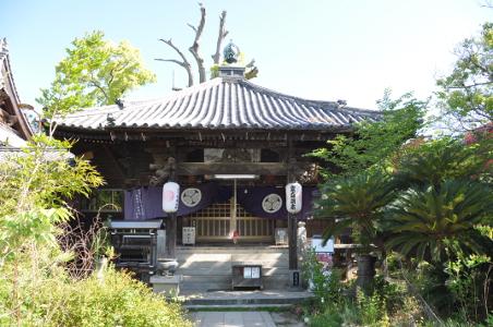 Shikoku J48_Catherine_Blog-CouleurSenior_Nikon 5 0335