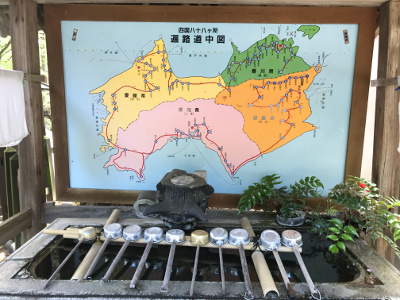 Shikoku J52_Catherine_Blog-CouleurSenior_IMG 2170